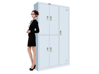 HDL-12 5-door locker
